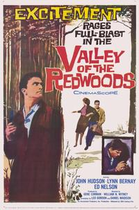 Valley of the Redwoods - 11 x 17 Movie Poster - Style B