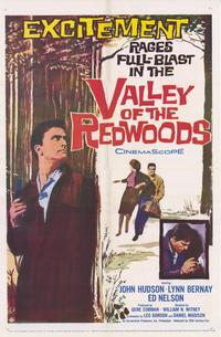 Valley of the Redwoods - 27 x 40 Movie Poster - Style A