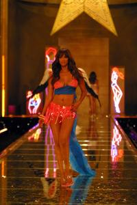 Victoria's Secret Fashion Show - 8 x 10 Color Photo #7