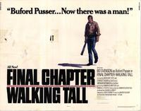 Walking Tall: The Final Chapter - 22 x 28 Movie Poster - Half Sheet Style A