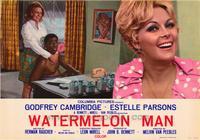 Watermelon Man - 27 x 40 Movie Poster - Style K