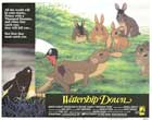 Watership Down - 11 x 14 Movie Poster - Style C