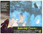 Watership Down - 11 x 14 Movie Poster - Style D