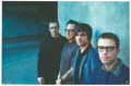 Weezer - Music Poster - 22 x 26 - Style A