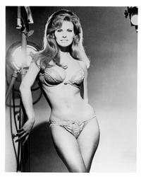 Raquel Welch - 8 x 10 B&W Photo #1