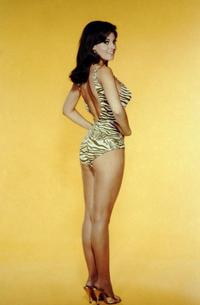 Raquel Welch - 8 x 10 Color Photo #8