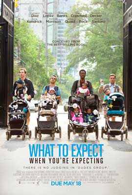What to Expect When You're Expecting - DS 1 Sheet Movie Poster - Style E
