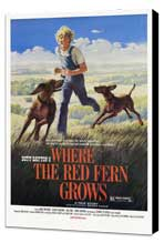 Where the Red Fern Grows - 27 x 40 Movie Poster - Style B - Museum Wrapped Canvas