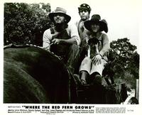 Where the Red Fern Grows - 8 x 10 B&W Photo #7
