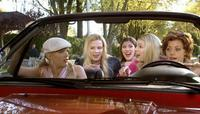 White Chicks - 8 x 10 Color Photo #9