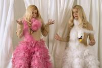 White Chicks - 8 x 10 Color Photo #19