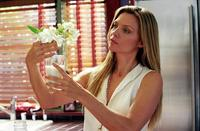 White Oleander - 8 x 10 Color Photo #6