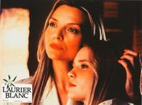 White Oleander - 8 x 10 Color Photo #20
