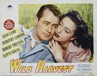 Wild Harvest - 11 x 14 Movie Poster - Style F