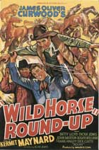 Wild Horse Roundup