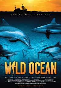 Wild Ocean 3D - 27 x 40 Movie Poster - Style A