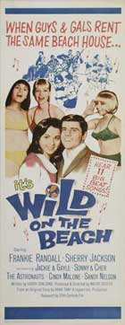 Wild on the Beach - 14 x 36 Movie Poster - Insert Style A