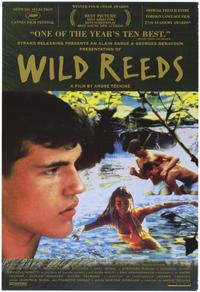 Wild Reeds - 43 x 62 Movie Poster - Bus Shelter Style A