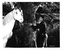 Wild Stallion - 8 x 10 B&W Photo #2