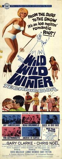 Wild Wild Winter - 14 x 36 Movie Poster - Insert Style A