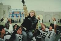 Wildcats - 8 x 10 Color Photo #14
