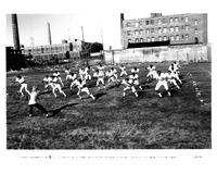 Wildcats - 8 x 10 B&W Photo #5