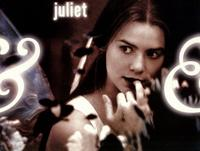 William Shakespeare's Romeo and Juliet - 11 x 14 Movie Poster - Style B
