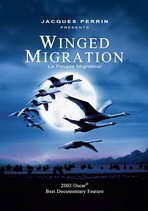 Winged Migration - 27 x 40 Movie Poster - Style C