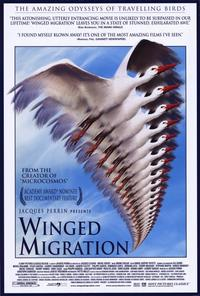 Winged Migration - 11 x 17 Movie Poster - Style A