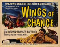 Wings of Chance - 22 x 28 Movie Poster - Half Sheet Style A