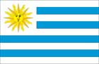 World Cup Soccer 2010 - 11 x 17 Flag Poster - Uruguay