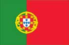 World Cup Soccer 2010 - 24 x 36 Flag Poster - Portugal