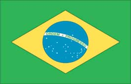 World Cup Soccer 2010 - 11 x 17 Flag Poster - Brazil