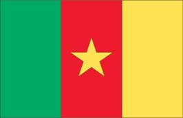 World Cup Soccer 2010 - 11 x 17 Flag Poster - Cameroon