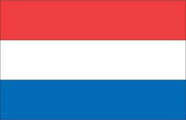 World Cup Soccer 2010 - 11 x 17 Flag Poster - Netherlands