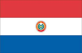 World Cup Soccer 2010 - 11 x 17 Flag Poster - Paraguay