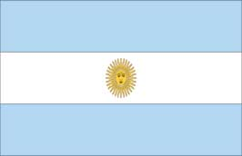World Cup Soccer 2010 - 24 x 36 Flag Poster - Argentina