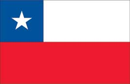World Cup Soccer 2010 - 24 x 36 Flag Poster - Chile