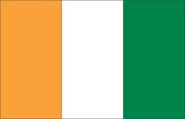 World Cup Soccer 2010 - 24 x 36 Flag Poster - Cote d'Ivoire