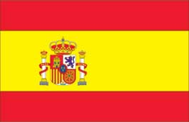 World Cup Soccer 2010 - 24 x 36 Flag Poster - Spain