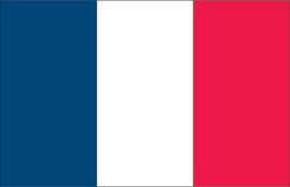 World Cup Soccer 2010 - 24 x 36 Flag Poster - France