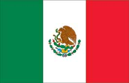 World Cup Soccer 2010 - 24 x 36 Flag Poster - Mexico