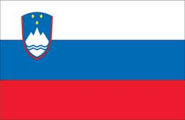 World Cup Soccer 2010 - 24 x 36 Flag Poster - Slovenia