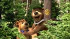 Yogi Bear - 8 x 10 Color Photo #30