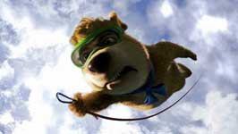 Yogi Bear - 8 x 10 Color Photo #38