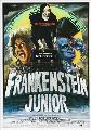 Young Frankenstein - 27 x 40 Movie Poster - German Style A