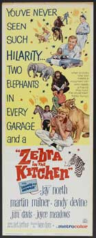 Zebra in the Kitchen - 14 x 36 Movie Poster - Insert Style A
