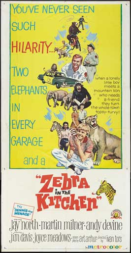 Zebra in the Kitchen - 20 x 40 Movie Poster - Style A