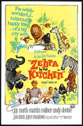 Zebra in the Kitchen - 27 x 40 Movie Poster - Style A