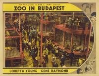 Zoo in Budapest - 11 x 14 Movie Poster - Style E